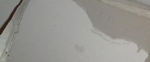 lek dak reparatie